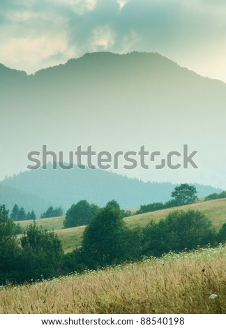 vertical photo of hills and meadows. dominant green color