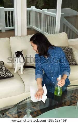 Vertical photo of mature woman looking at her cat while holding spray bottle and paper towels in hand with glass table in front and sofa and windows in background - stock photo