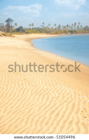 Vertical photo of the sandy beach at the ocean with palms on a background. Vibrant colors and shallow depth of field for natural view - stock photo