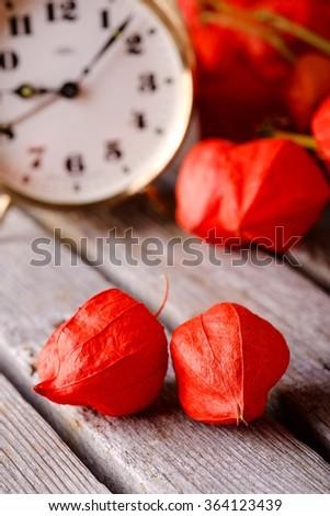 Vertical photo with Couple of red gooseberry physalis blooms in front of several branches with the same flower and brass alarm clock placed on old grey wooden board. - stock photo
