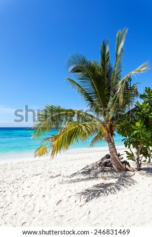 Vertical picture of beautiful tropical island, Koh Lipe in Thailand.  - stock photo