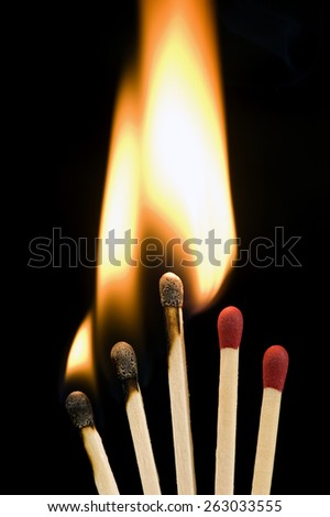 Vertical Shot Of Burning Matches/ Networking Concept/ Matches Burning - stock photo