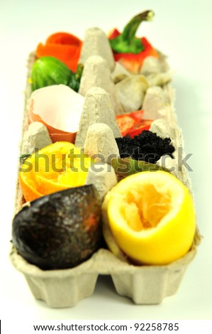 Vertical view of compost fruit and veg in egg carton on white background - stock photo