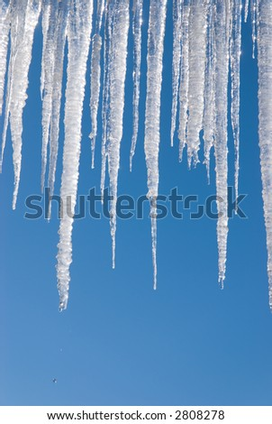 vertical view of long icicles against a blue sky