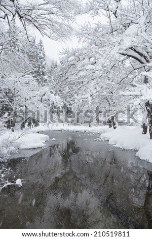 Vertical winter scene with snow-covered trees and icy mountain stream - stock photo