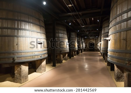 vertical wooden barrels in old cellar - stock photo
