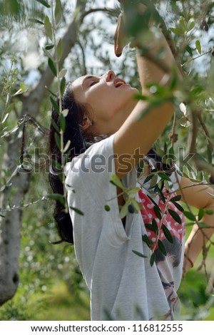 Very beautiful young woman in the olive garden, Tuscan, Italy - stock photo
