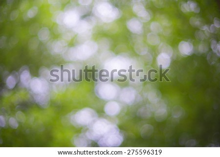 very blur image of leaves for background use - stock photo