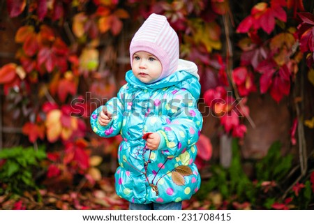 Very cute little girl in the blue jacket on the background of red vine leaves