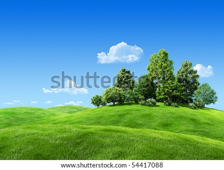 Very detailed 7000px trees on hill - nature collection - stock photo
