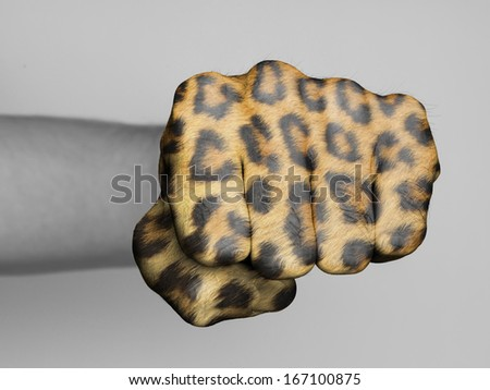 Very hairy knuckles from the fist of a man punching, leopard print - stock photo