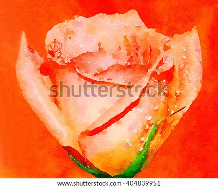 Very Nice Painting Of a Pink Rose