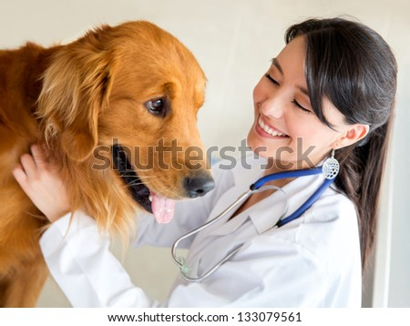 Vet examining a cute dog and smiling - stock photo