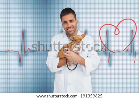 Vet holding chihuahua against medical background with red ecg line - stock photo