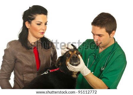 Vet male examine ear dog and his owner looking attentive isolated on white background