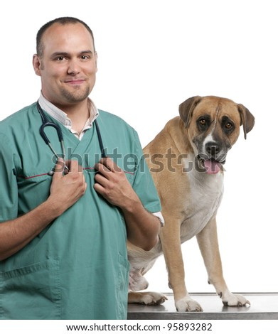 Vet standing next to a Crossbreed dog, dog in front of white background - stock photo