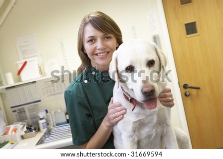 Vet With Dog In Surgery - stock photo