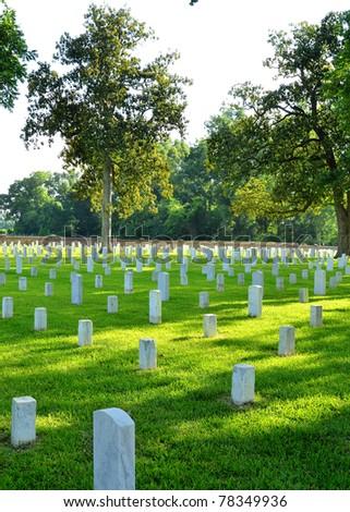 Veteran Memorial Cemetery - stock photo