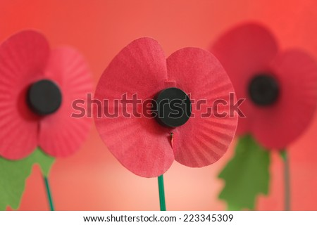 Veteran's Memorial Poppies - stock photo