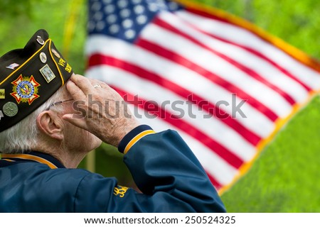Veteran's Saluting - stock photo