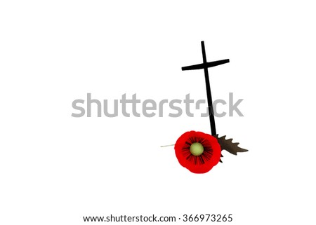 Veterans Day poppy with cross in isolated on white background - stock photo