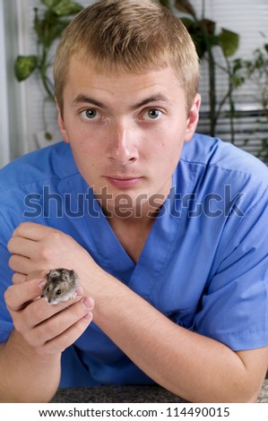 veterinarian and hamster in clinic - stock photo