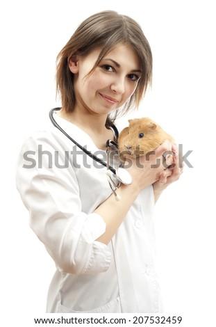 veterinarian and pet - stock photo