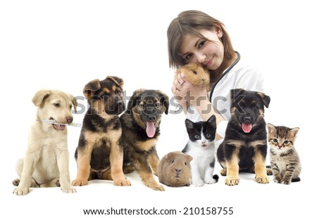 veterinarian and Pets  - stock photo