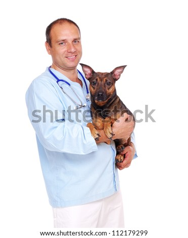 Veterinarian doctor holding the  dog on white background - stock photo