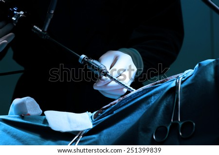 veterinarian doctor in operation room for laparoscopic surgical take with blue filter - stock photo