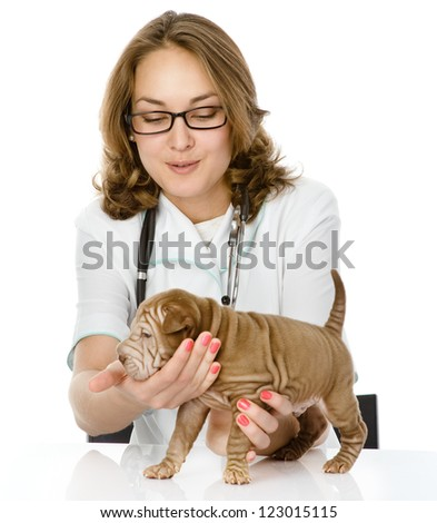veterinarian doctor making a checkup of a sharpei puppy dog. isolated on white background - stock photo