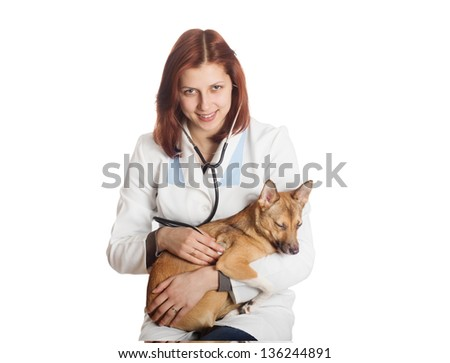 veterinarian examines a puppy with a stethoscope on a white background isolated