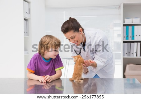 Veterinarian examining a cat with its owner in medical office - stock photo