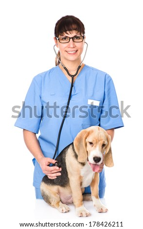 veterinarian examining a puppy dog. isolated on white background