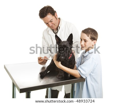 Veterinarian giving a shot to a Scotty dog while the little boy owner helps.  Isolated on white. - stock photo