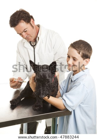 Veterinarian giving vaccination to a child's dog.  Focus on vet's face.  Isolated on white.