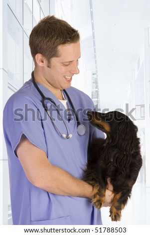 Veterinarian holding a black dog. - stock photo