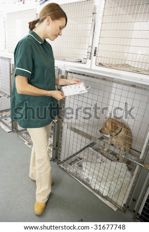 Veterinary Nurse Checking Sick Animals In Pens - stock photo