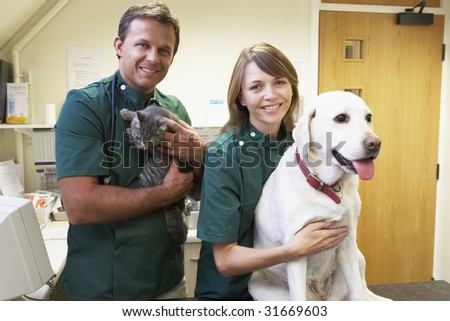 Vetinary Staff With Dog And Cat In Surgery - stock photo