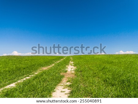 Vibrant Colors Fields of Sunlight  - stock photo