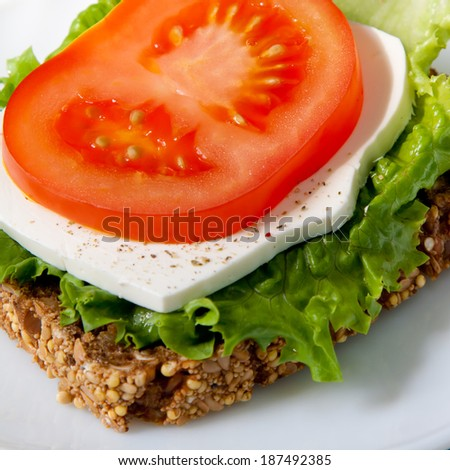 Vibrant colors healthy sandwich with wholegrain bread, green lettuce, white cheese and ripe red tomato slice - stock photo