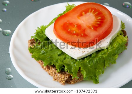 Vibrant colors healthy sandwich with wholegrain bread, green lettuce, white cheese and ripe red tomato slice on the plate - stock photo