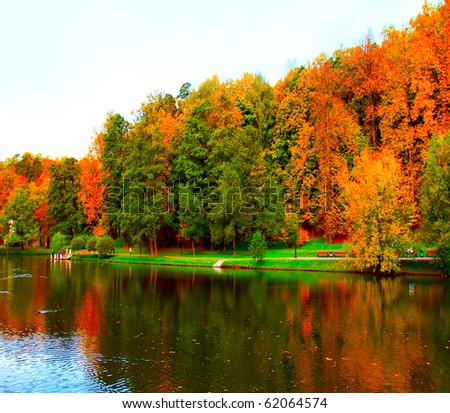 vibrant forest over lake - stock photo