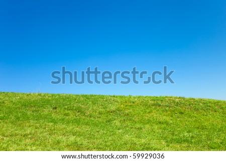 Vibrant meadow horizon landscape - stock photo
