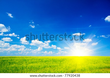 Vibrant rapeseed field and cloudscape - stock photo