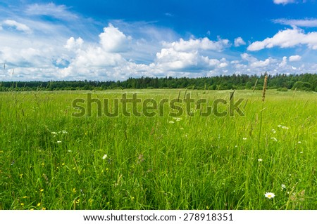 Vibrant Springtime Growth Season  - stock photo