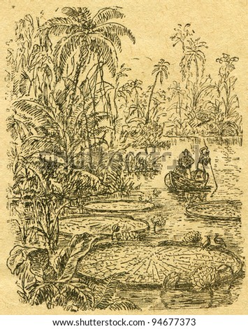 """Victoria Regia - an illustration from the book """"In the wake of Robinson Crusoe"""", Moscow, USSR, 1946. Artist Petr Pastukhov - stock photo"""