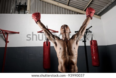 victorious boxer holds his gloves up high in celebration - stock photo