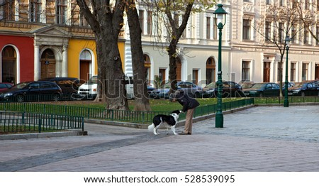 VIENNA, AUSTRIA - 16 11 2012: An unidentified woman with her dog on early morning dog walk