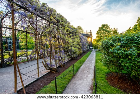 VIENNA, AUSTRIA - CIRCA APRIL 2016: Beautiful pergola in Schonbrunn gardens in Vienna. Schonbrunn gardens are one of the most important architectural and historical places in Austria